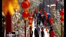 乐都区第四届梨文化艺术节开幕