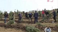 尖扎县掀起春季造林绿化高潮