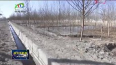 智能微电站解决林区管护站用电难题