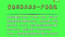 黄南州林业助力一产再提速