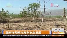 国家电网助力海东农业发展