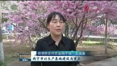 青海新闻联播 20190524