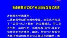 黄南州推动文化产业高质量发展显实效