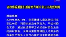 省检察院通报扫黑除恶专项斗争五大典型案例