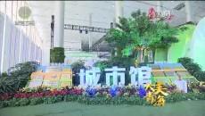 大美青海 20190619