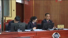 同仁地区首例涉恶案件当庭宣判