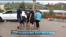 祁連縣遭遇短時強降水 部分農戶房屋及農作物受損