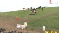 門源縣農業技術推廣中心舉辦植保無人機飛防除草現場觀摩會
