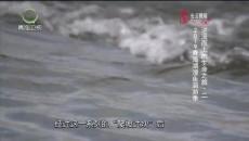 大美青海 20190723