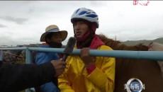 草原上的速度與激情——傳統耐力賽馬大會 賽馬比賽在騰格里賽馬場拉開帷幕