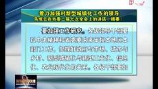 着力加强对新型城镇化工作的领导 鸟成云在海东市委二届七次全会上的讲话(摘要)