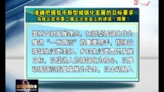 准确把握海东市新型城镇化发展的目标要求 鸟成云在海东市委二届七次全会上的讲话(摘要)