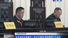 全省首例涉黑案件二審公開宣判 首犯獲刑二十五年