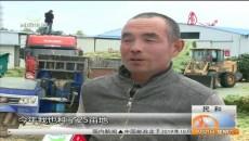 """40多万亩玉米秸秆成农民增收""""香饽饽"""""""