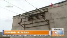 保障用电 助力企业