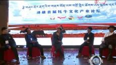 泽库县举办首届青年创业论坛
