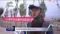 """红柳村:""""生态循环+休闲农业""""让农民的钱袋子鼓起来"""