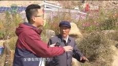 大美青海 20191030