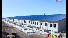 聚焦重點項目 提速海東發展 全力招商引資 助力經濟發展