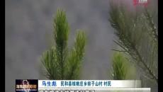 绿色河湟 生态海东 造林绿化扮靓生态家园