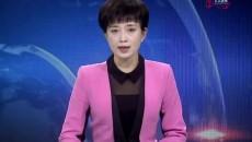 海东新闻联播 20191128