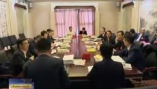 西寧代表團分組審議政府工作報告
