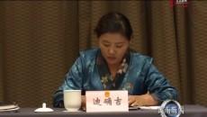 黃南代表團審議省政府工作報告