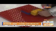 """青海省首屆""""青苗杯""""少兒機器人創意大賽在西寧舉行"""
