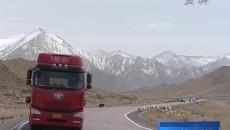 全力保障春運期間道路交通安全暢通