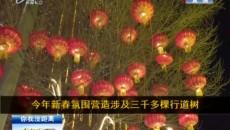 灯笼体现中国红
