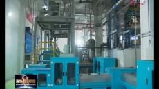 王林虎深入海東重點企業調研疫情防控和復工復產工作
