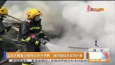 温室大棚着火烧死30余只鸡鸭 消防指战员成功扑救