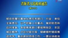 青海省人民政府通告(第19号)