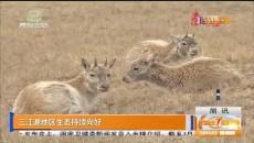 三江源地區生態持續向好