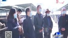 海南州委副书记卫新华到贵德调研督导工作