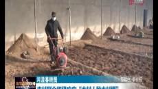 """河湟春耕圖 農村群眾積極響應""""本村人種本村棚"""""""