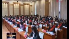 團海東市委召開二屆二次全委(擴大)會議