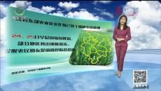 天氣預報 20200422