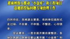 """黃南州深入推動""""小金庫""""和工程項目違規招投標問題專項治理工作"""