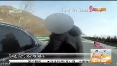 高速公路上违法倒车 原是司机驾照已被扣满12分