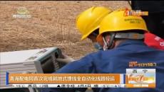 青海配电网首次完成就地式馈线全自动化线路投运
