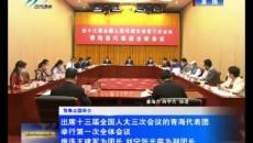 出席十三屆全國人大三次會議的青海代表團舉行第一次全體會議 推選王建軍為團長 劉寧張光榮為副團長