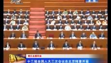 十三屆全國人大三次會議在北京隆重開幕
