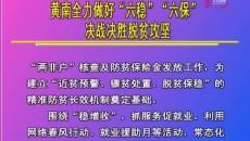 """黃南全力做好""""六穩""""""""六?!睕Q戰決勝脫貧攻堅"""