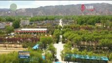 國土綠化鞏固三年行動 黃南:國土綠化繪就生態畫卷