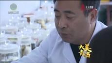 大美青海 20200604