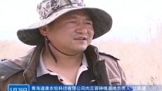 """科尔牧业村的""""苁蓉梦"""""""