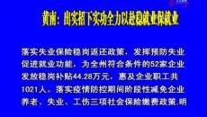 黃南:出實招下實功全力以赴穩就業保就業