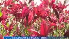 花卉種植映紅致富路