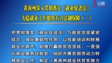 黄南州深入贯彻落实《就业促进法》为稳就业工作提供有力法制保障(二)